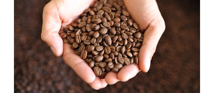 Lusitania food enters the world of coffee